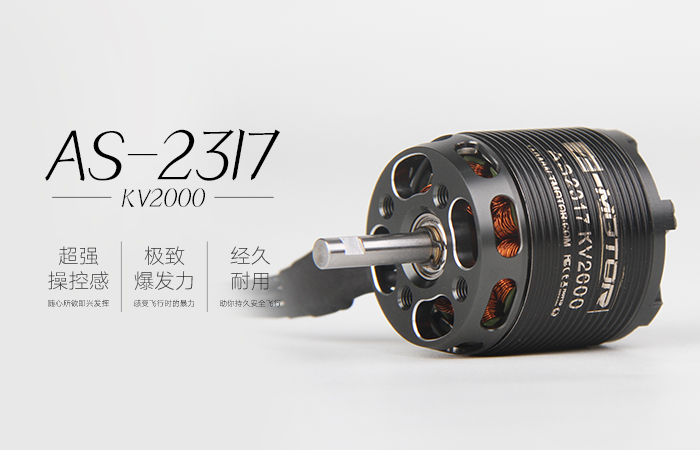 AS 2317 长轴